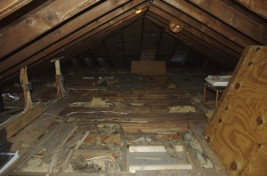 Most of the old flooring ripped out